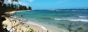 cropped-cropped-beachview1.jpg