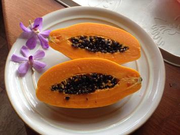 15_gv_4_papaya