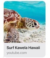 surfkawela